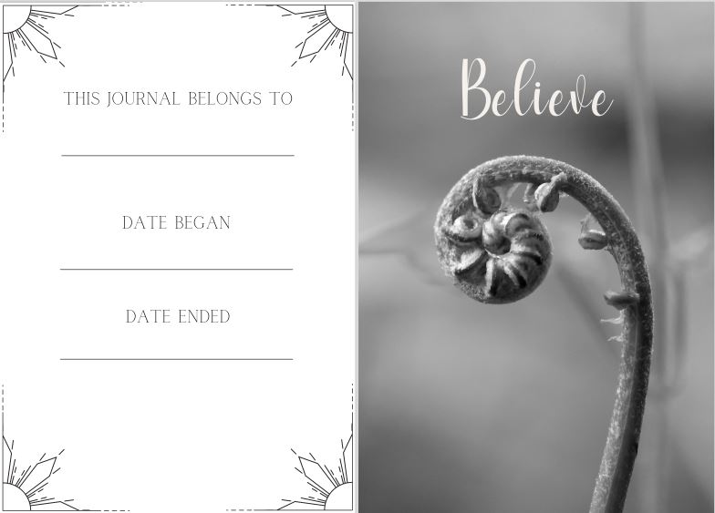 healing shadow work journal